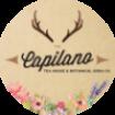 The Capilano Tea House