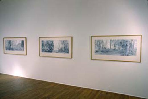 Reid Shier, 1990