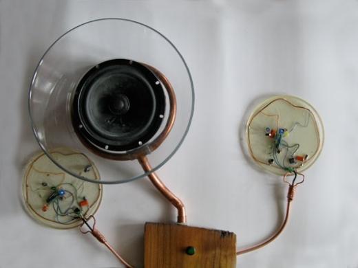 Audio Bug (detail), 2010. Diana Burgoyne
