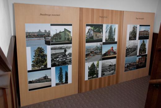 Glenn Lewis, TAXONOMIES, installation view, 2011. Image credit Kevin Schmidt