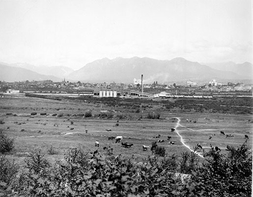 Looking North over False Creek Flats, 1935