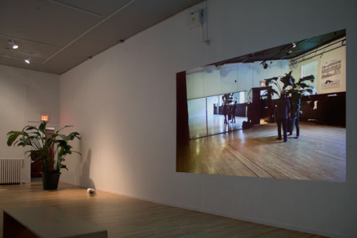 Abbas Akhavan, Installation view of green house, 2013 (from left: Consort, bird of paradise plant; Tame, plaster, fabric; Crew, video projection). Image by Maegean Hil-Carroll.