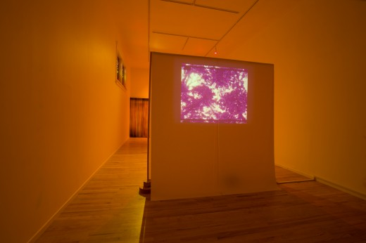 Nicole Kelly Westman. for nights bathed in sodium vapour, Super 8 transferred to digital, audio by Kurtis Denne, 2019. Photo: Dennis Ha