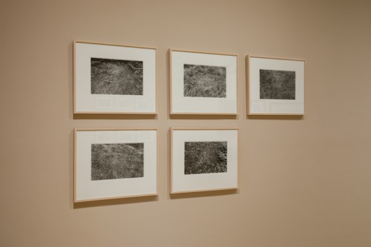 Marlene Creates, (L-R) Excerpt #24/25, #22/25, #21/25, #25/25, #23/25 (from Sleeping Places, Newfoundland 1982), 1982,